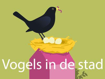 affiche 'Vogels in de stad'