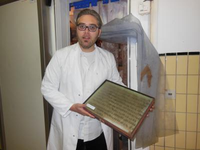 Freeze treatment to protect the storage cabinets against fungal contamination and infestation by the larvae of the museum beetle