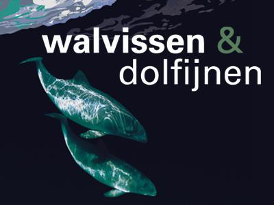 Visual van de tentoonstelling 'Walvissen & dolfijnen':tekening van 2 walvisachtigen in een zwarte zee