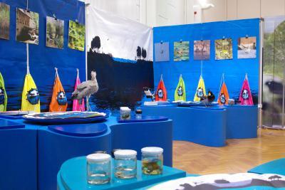 Au travers de différentes activités, les enfants découvrent l'un des cinq biotopes humides de Bruxelles.