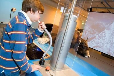 In der Ausstellung können Sie die von Ihnen verbrauchte Sauerstoffmenge berechnen und die Leistungsfähigkeit Ihrer Lungen messen.
