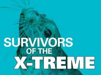 Survivors of the X-Treme