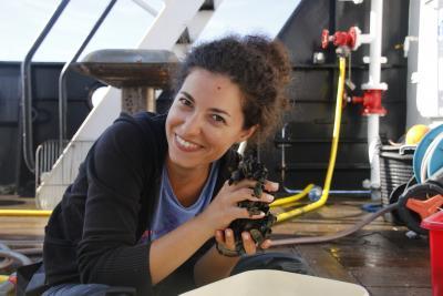 Ninon lors d'un échantillonnage dans un parc éolien offshore. (© IRSNB/N. Mavraki)