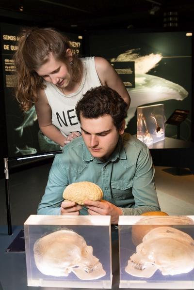 A man holding an hands-on human brain
