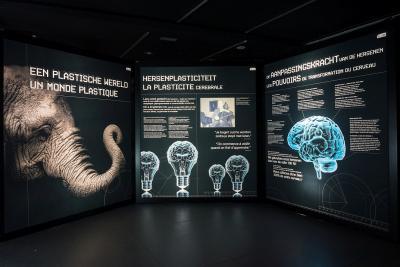 """Trois panneaux de la zone """"Un monde plastique"""""""