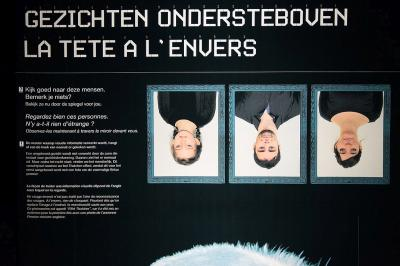 Panel with three upiside down faces