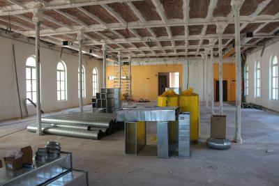 Dans l'ancienne salle des Cavicornes (au bout de la salle Mammifères), les colonnes de métal, autrefois cachées dans des coffrages, sont à nouveau visibles. (photo prise le 2 juillet 2015, © IRSNB)