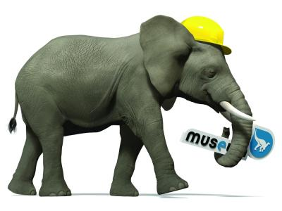 Un éléphant avec un casque de chantier sur la tête