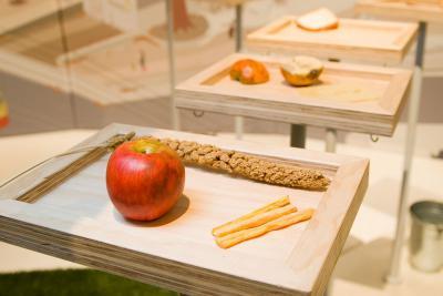 mangeoires-plateaux sur lesquelles sont posés différents aliments (graines, pommes, fromages...)