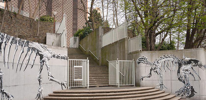 The Royal Belgian Institute of Natural Sciences