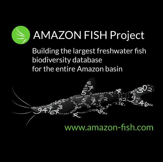 AMAZON FISH logo