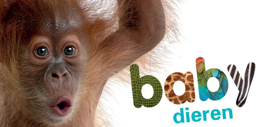 Visual van Babydieren