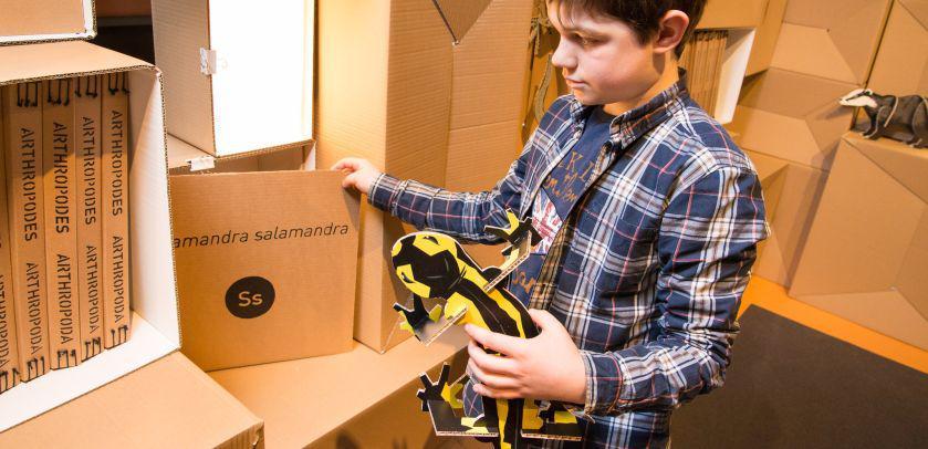 Un enfant tient un modèle 2D agrandi de salamandre dans les mains