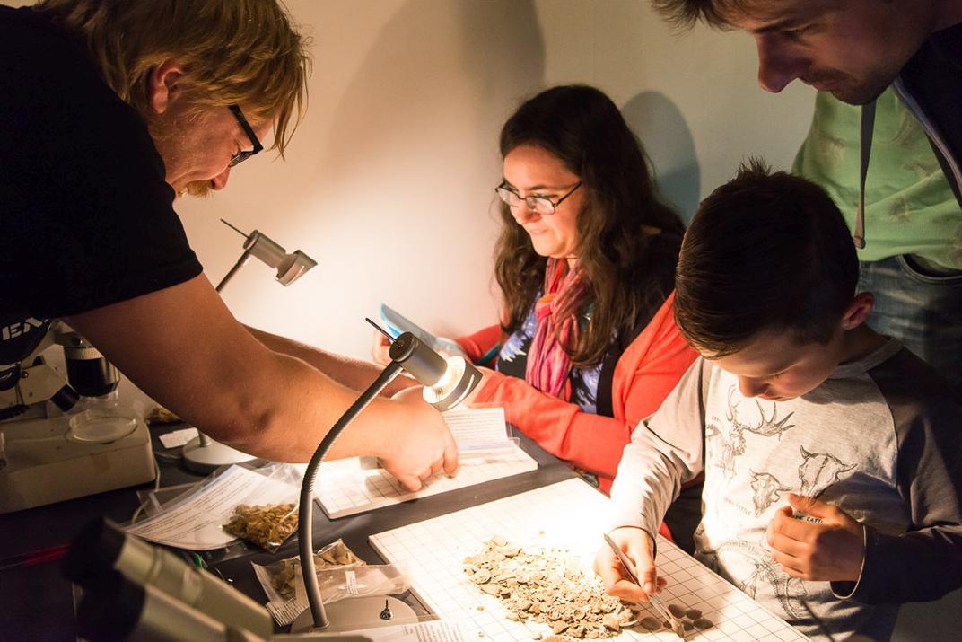 des enfants trient des fossiles lors d'une animation de l'Association Belge pour la Paléontologie (photo : Thierry Hubin / IRSNB)