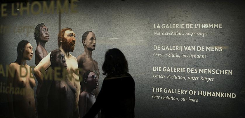 """Une femme en ombre chinoise regarde le visuel de la """"Galerie de l'Homme - Notre évolution, notre corps"""" (photo: Koen Broos)"""