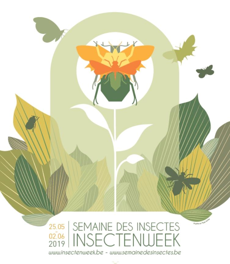 Poster Insectenweek/Semaine des Insectes 2019
