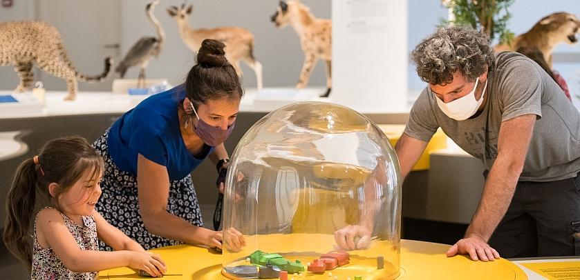 Eine Familie testet eines der interaktiven Spiele, die die Herausforderungen veranschaulichen, vor denen Tiere heute stehen (Foto: Thierry Hubin / KBIN)