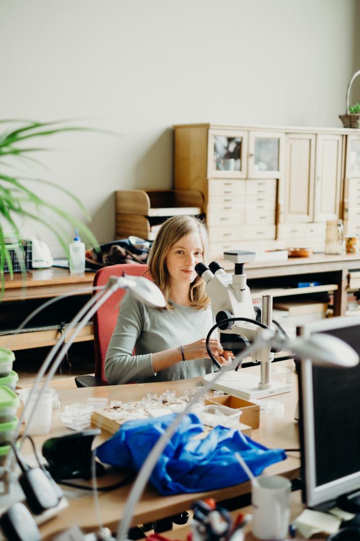 L'archéobotaniste Lien Speleers se préparant à observer des spécimens au microscope (photo : IRSNB)