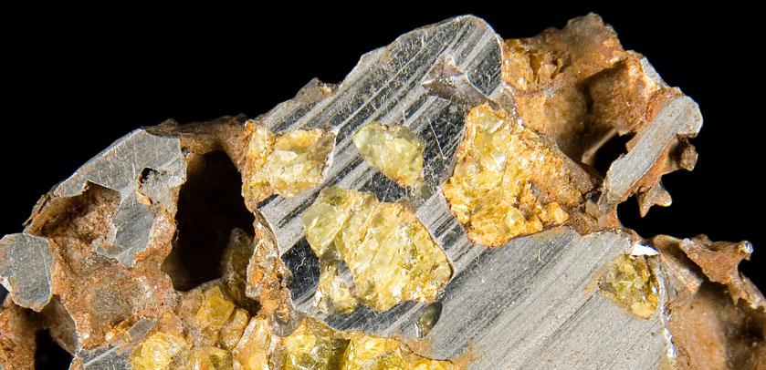 Slice of a pallasite