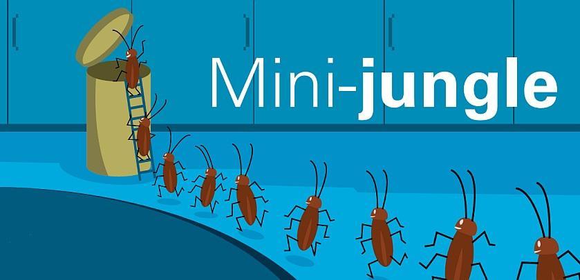 affiche Mini-jungle