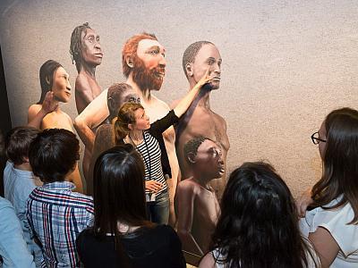een groep voor het visueel van de Galerij van de Mens