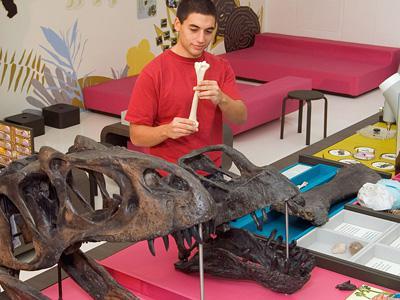 Stage de Carnaval : Dino-exploration
