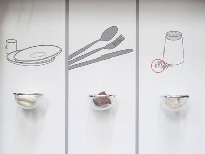 animation : les minéraux domestiques