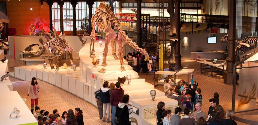 Museum für Naturwissenschaften