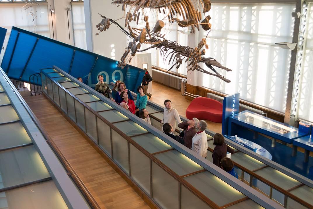 Een groep volwassenen bezoekt de Galerij van Evolutie met een gids.