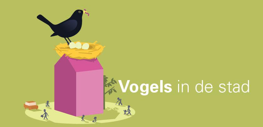visueel 'Vogels in de stad'