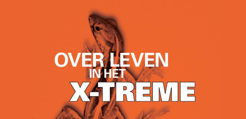 Over leven in het X-TREME: visual met een woestijnhagedis