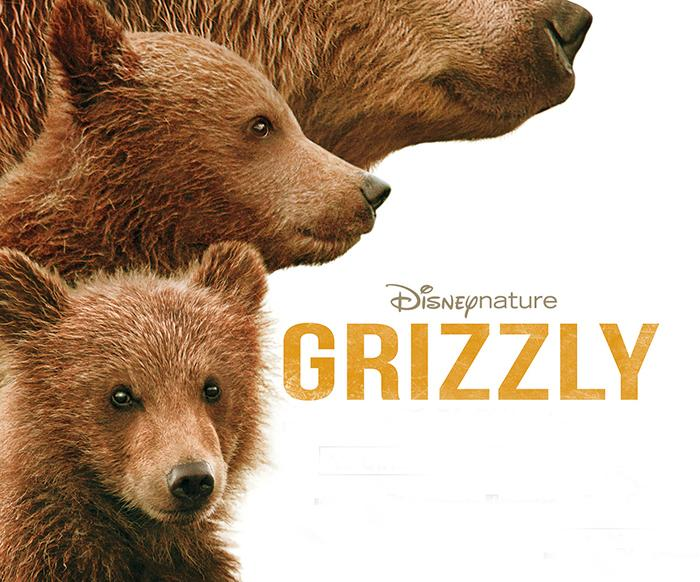 Affiche Grizzly (copyright Disneynature)