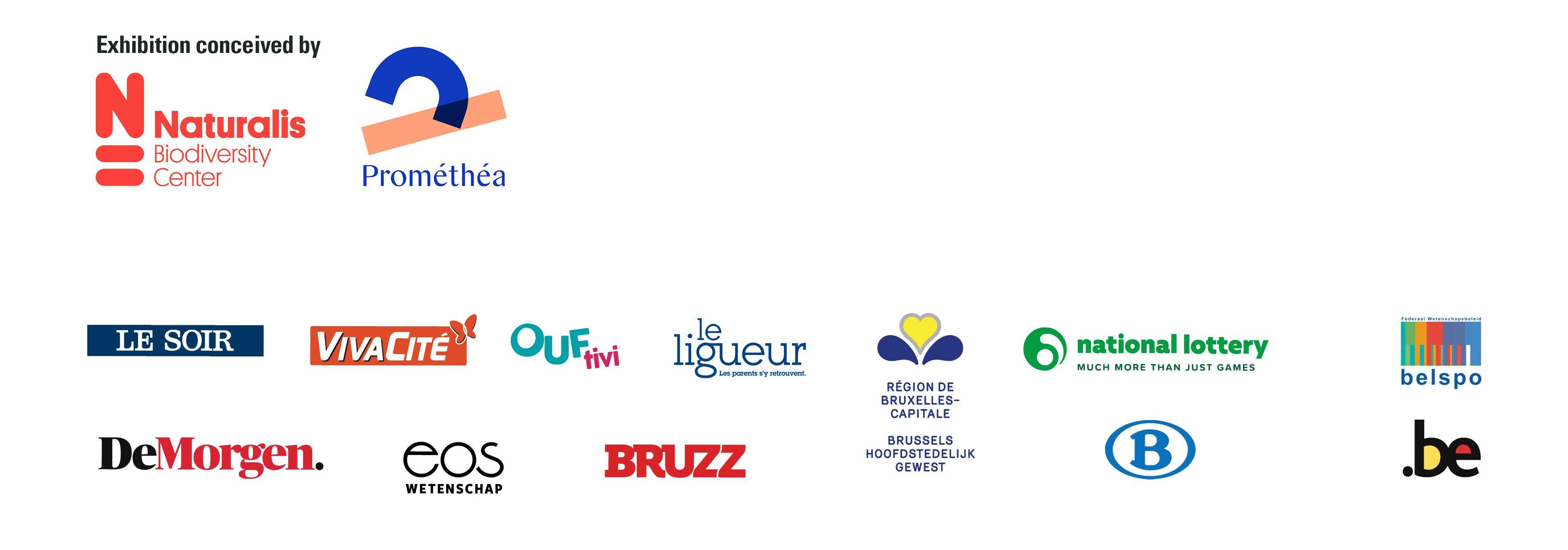 Our partners to the exhibition T. rex