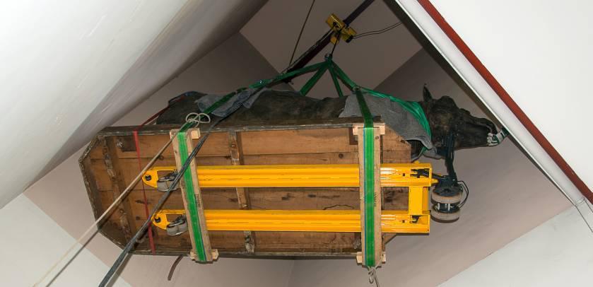 De neushoorn wordt naar beneden gelaten in het trappenhuis.
