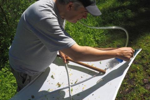Een entomoloog verzamelt insecten met een insectenstofzuiger (Foto: Isabelle Sauvage / KBIN)