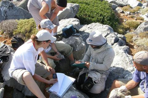 Group of ornithologists measuring birds (photo: Natural History Museum Crete)