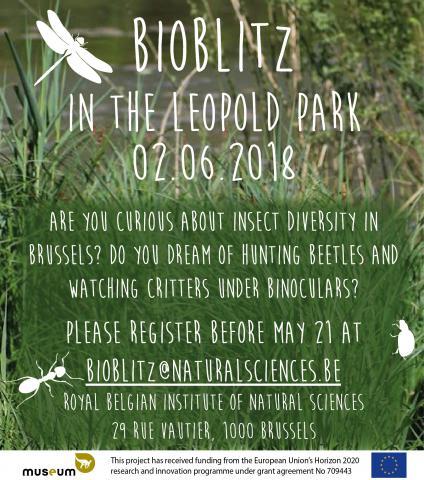 Flyer BioBlitz 02.06.2018