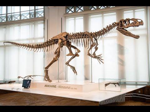 'Arkhane', the new Jurassic dinosaur
