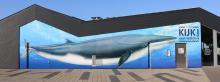 Zomerexpo 'Kijk, een walvis' © KBIN/K. Moreau