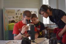 Des participants du Bioblitz observent leurs trouvailles au microscope (photo : IRSNB)