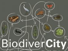 Visuel de l'expo-atelier BiodiverCity