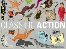 """Visuel de l'expo-atelier """"Classific'Action"""": différentes espèces vivantes réparties sur l'affiche sans respect des tailles de chacune"""