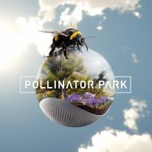 Welcome to Pollinator Park
