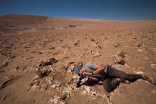 Alpheid in actie in de woestijn van Chili. (foto: P. Sobron / SETI NAI Andes 2016 Expedition)
