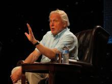 De Britse documentairemaker Sir David Attenborough werd 90 dit jaar. (Foto: Jeaneeem, Flickr)
