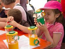 Kinderen kijken insecten met een vergrootglasdoosje (foto: KBIN)