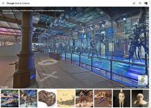 Galerij van de Dinosauriërs in Street View