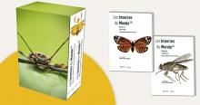 Book 'Insectes du Monde'