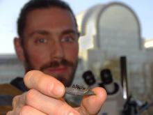 Een van onze paleontologen, Floréal Solé, houdt het kaakbeentje vast van het oudste vleesetende zoogdier van Europa. (Foto: Thierry Smith, KBIN)