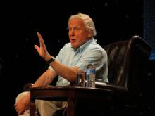 Le célèbre documentariste Sir David Attenborough (Photo: Jeaneeem, Flickr)